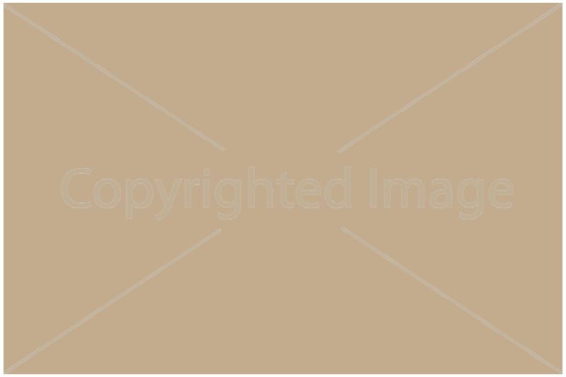 Watermark (водяной знак) для opencart 2.3.0.2